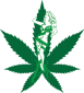 thumbnail_Hemptress Farms Logo